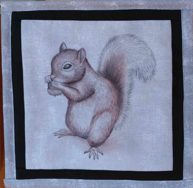 Happiness is a Squirrel - Sweetie One